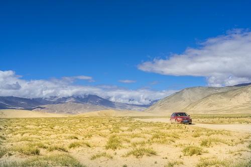 研究发现青藏高原草地植被驱动力发生变_青藏高原-植被-生产力-