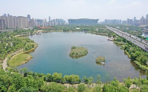 """《2021宝宝计划新版本_建设湿地可为城市""""降温""""》"""