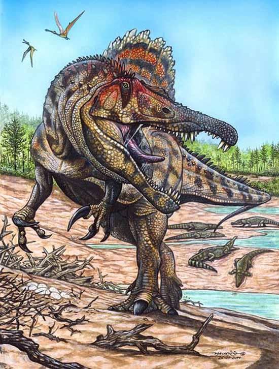 科学网—新发现巨型食肉恐龙有三排牙齿