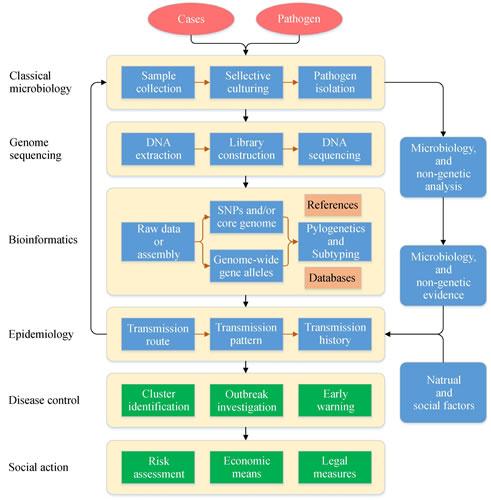 全基因组测序改变细菌性传染病监测和调查模式