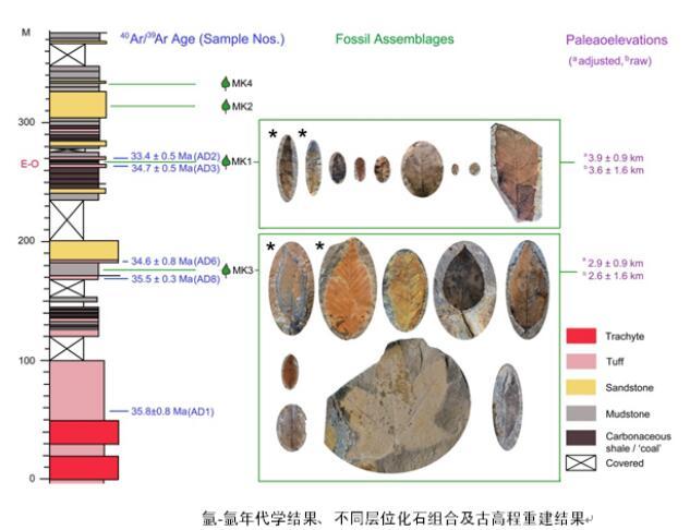 藏东南古高程及植物多样性演变新进展